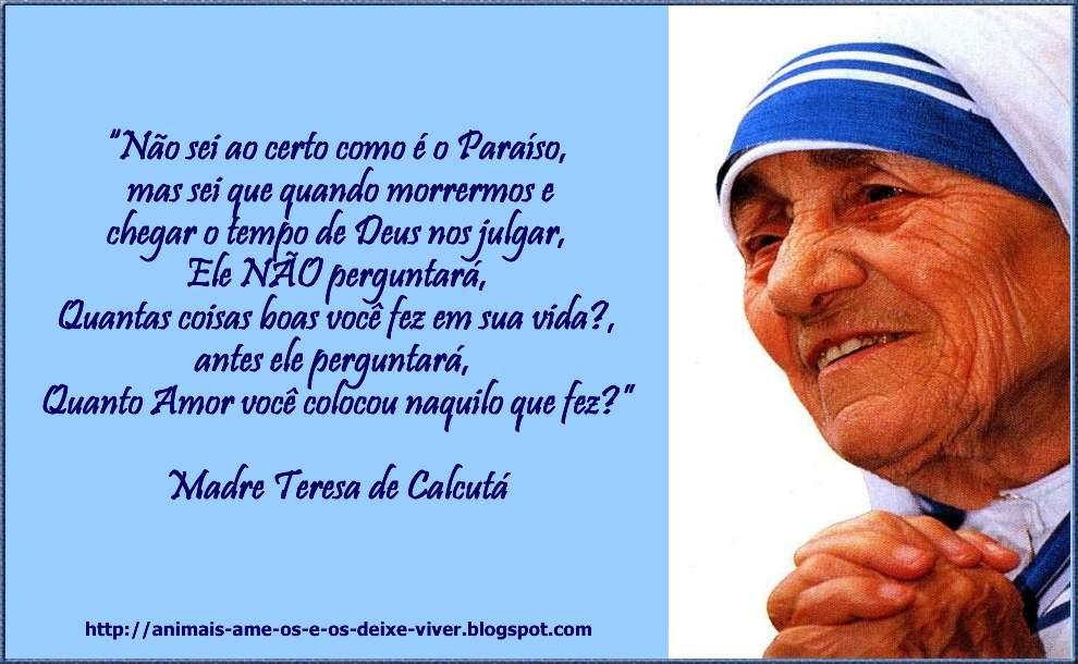 Madre Teresa Frase Espaço De Sol