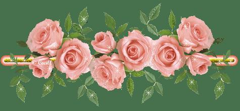 نواع سلاطات مختلف كثيره rosa-de-saron.png?w=