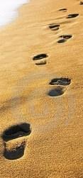 passos-na-areia-thumb5719658.jpg