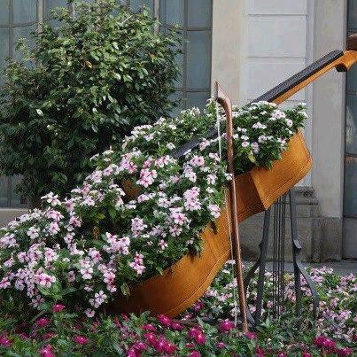 jardim violão