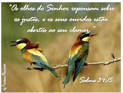 Salmo_34-15