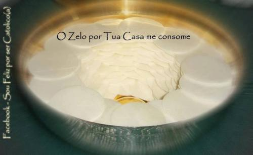 eucaristia zelo1506850_611418685600495_1246975645_n
