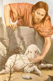 jesus pastor ovelha perdida images