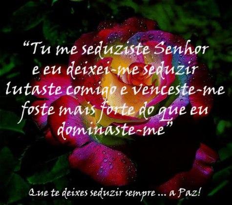 jeremias seduziste me Flor-seduzir