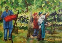 trabalhadores vinha images