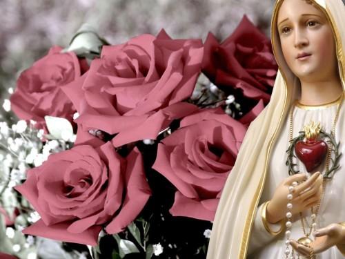 maria rosa rosario 14264