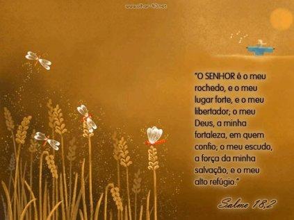 salmo-18-11