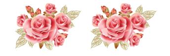 barra bordes-de-rosas4