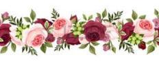 barra-rosa-aaimages